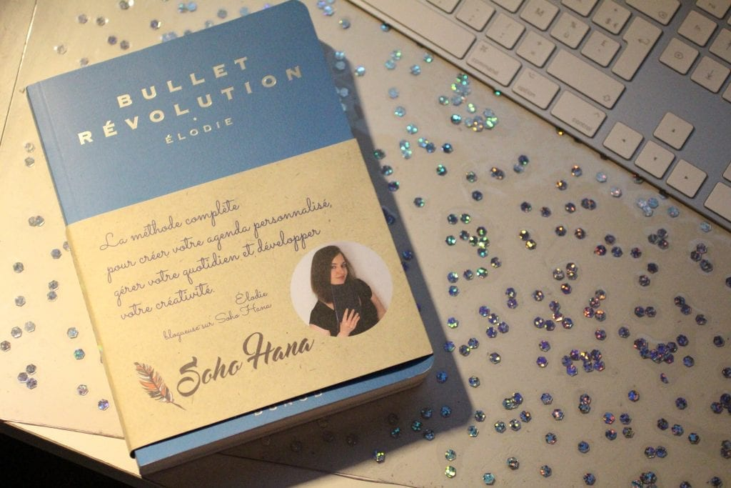 bullet revolution d'Elodie David