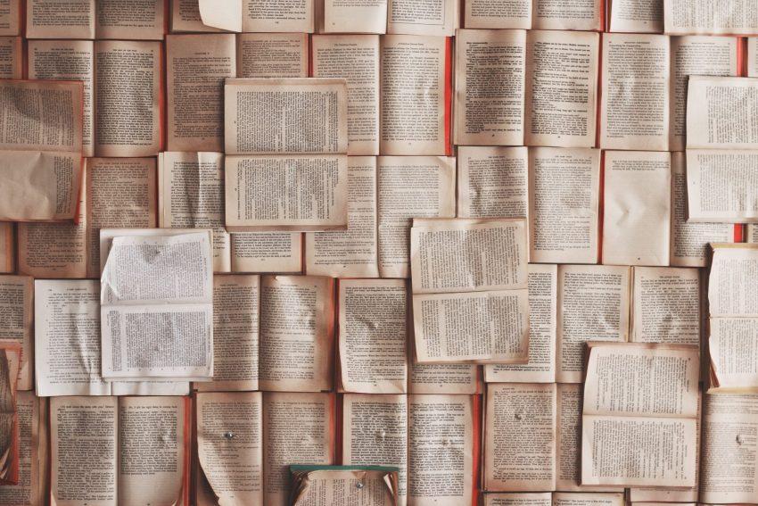 """Mon avis sur le livre """"Deux fois disparue"""""""